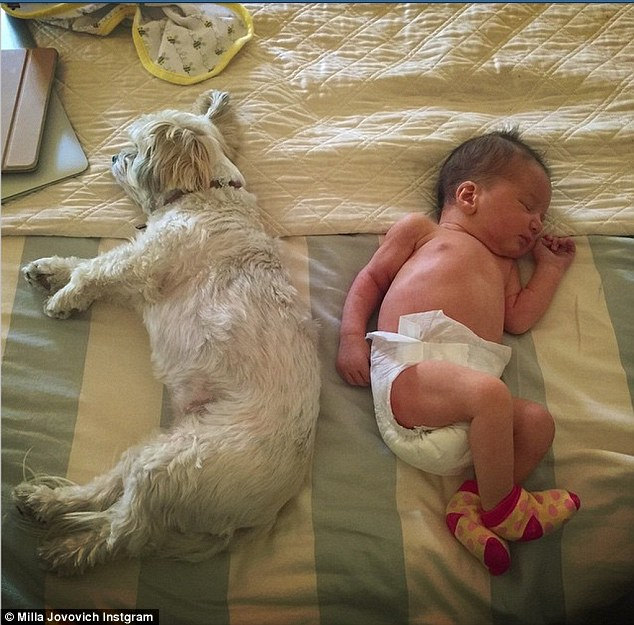 Bundle of joy! The 39-year-old captured a sweet moment in which little Dashiel sleeps next to her Maltese/Papillon mix Sweet Potato