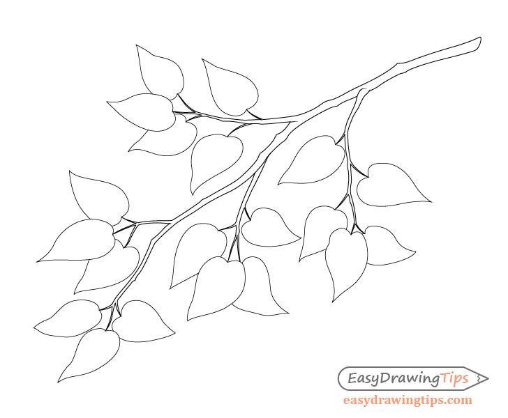 Branch with leafs outline drawing
